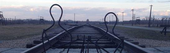 מסע שורשים לפולין לציבור החרדי